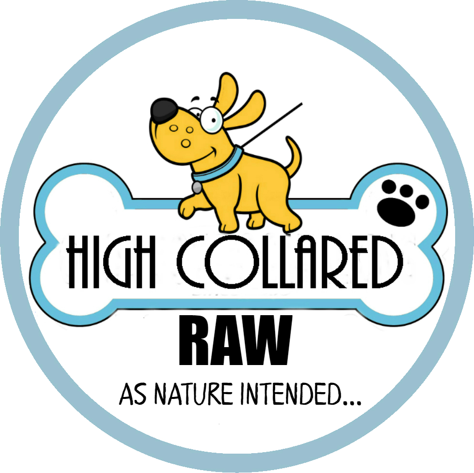 Raw Dog Food Ajax | High Collared Raw